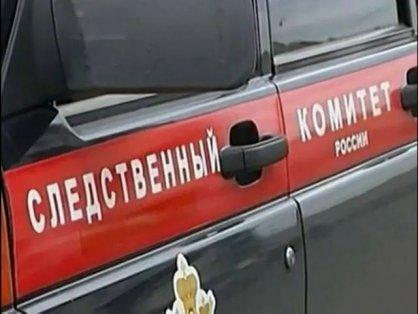 Чудовищное  убийство вПодмосковье: вовраге найдены два тела исгоревшая машина